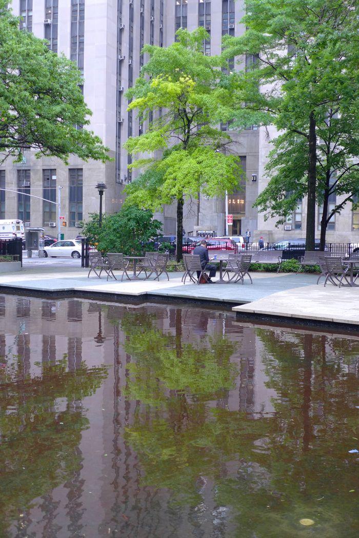 Collect-Pond-Park-pond6