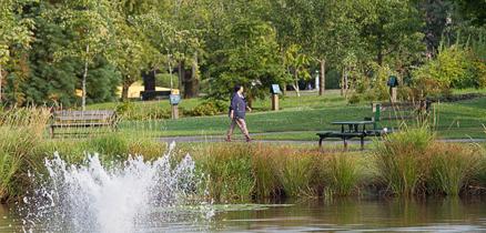Garden_City_Park_pond34853
