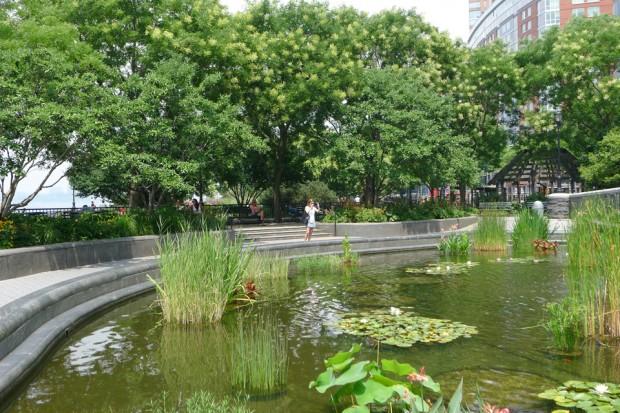 Koi-Pond-in-Battery-Park-City-620x413