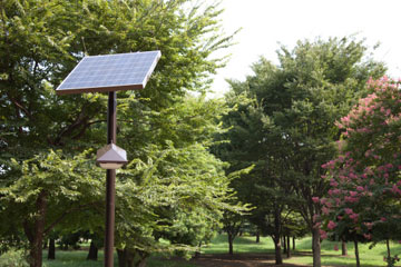 can-solar-energy-power-everyday-objects-efficiently-1